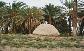 شهرستان سیب و سوران